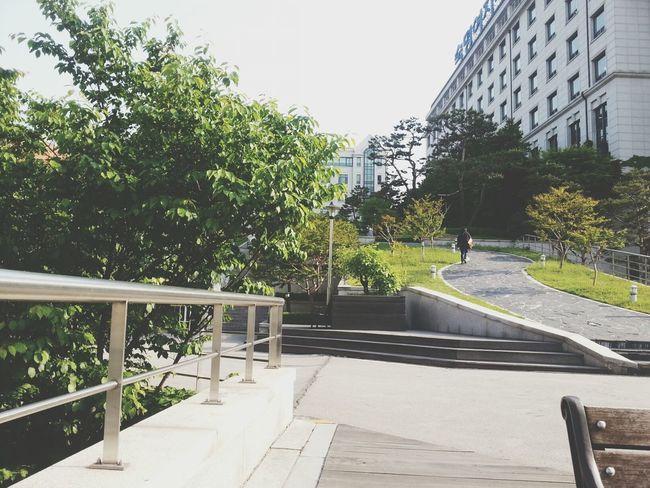 날씨 죽여주는 5월9일 금요일 Sunshine ☀ At University Sookmyung W UNIV.