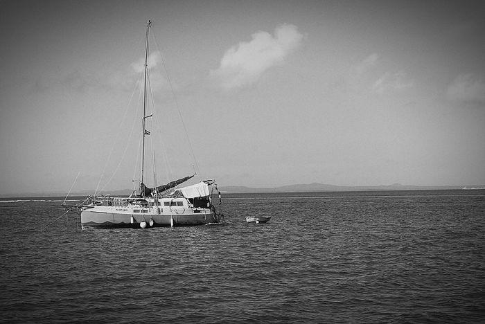 Love Boat Nautical Vessel Fisherman Architecture