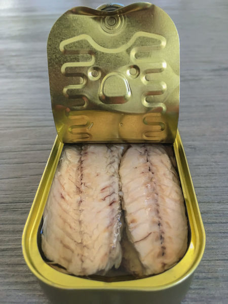 Mackerel in tin can Box Canned Food Close-up Extra Virgin Olive Oil Fisch Food Food And Drink Freshness Front View Healthy Eating Healthy Lifestyle Mackerel Metal No People Open Preserved Raw Fish Raw Food Ready-to-eat Sardine Seafood Stack Still Life Tin Can Wood - Material
