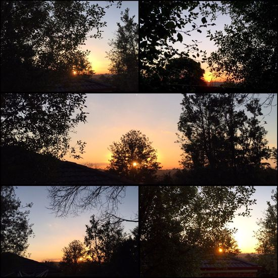 It may not be the orangegy red sky like we had the other night, but still it's a beautiful sunset tonight 🍃☀️🌤🌿 #sunset #shiningthroughthetrees #lovely ☀️🍃🌤🌿
