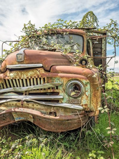 Abandoned Antique Bad Condition Car Damaged Day Deterioration Field Grass History Land Vehicle Mode Of Transport No People Obsolete Old Old Ruin Old-fashioned Outdoors Retro Styled Run-down Rusty The Past Transportation Tree Weathered