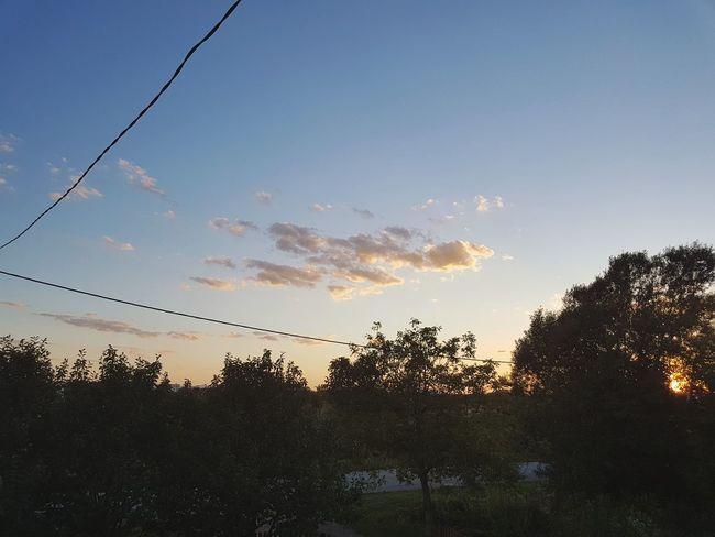 Tree Sky Sunset Nature No People Outdoors Beauty In Nature Slavonski Brod Croatia ❤