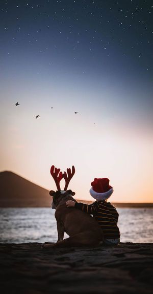 Rear view of boy with dog sitting at beach against sky during christmas