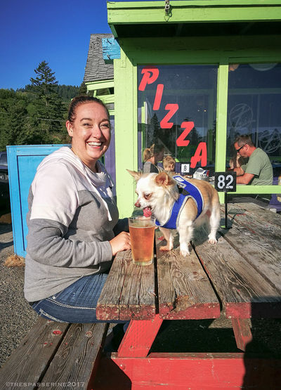 1) Lapdog a-lapping a pint of cider 2) Harry shielding shafts of broken sunlight Broken_light My_Beautiful_Harry_Dog Oregon_pets Outdoor_life Pet Portraits Small_dog Black_Greek_harehound Dogs_drinking_booz Lapdog Lapdog_lapping_cider First Eyeem Photo