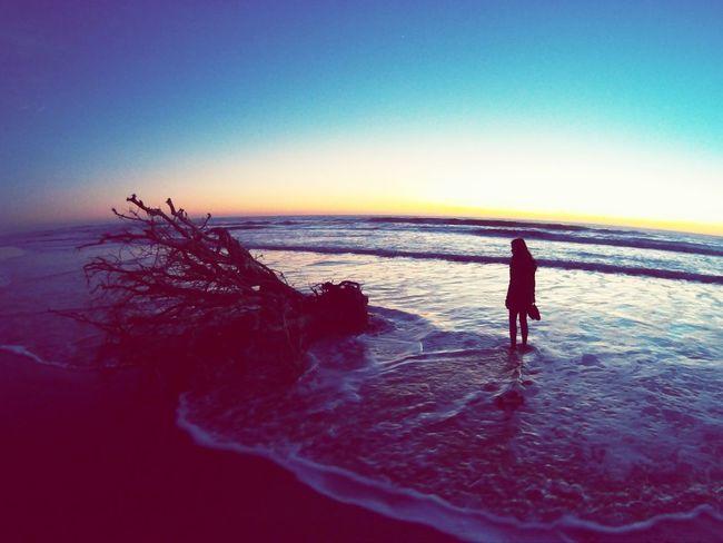 Sea Sunset Beauty In Nature Nature Horizon Over Water Women Photographer Sky People Beach Conil De La Frontera Conil Amazing Amazing Nature Love Lovephotography