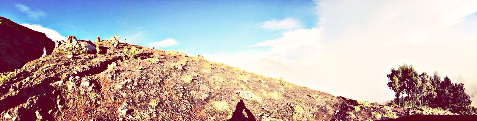 Trekking Monkeys
