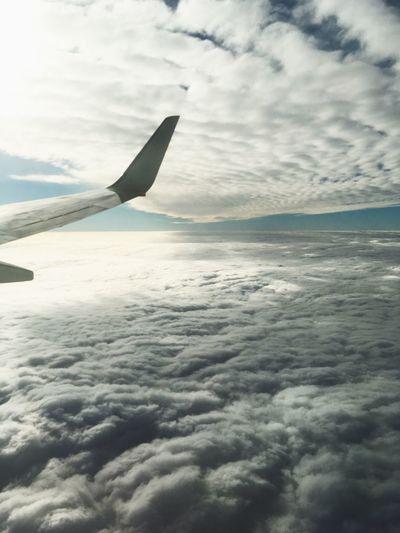 Sky Focal