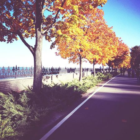 набережная Seafront Nature_collection Nature Lovely Amazing View Amazing Colorful Autumn Popular