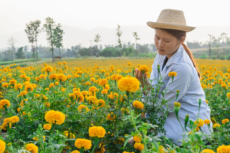 Marigold Portrait Flower Marigold Flower Farmer Selective Focus Lifestyles Outdoors Nature Plant Leisure Activity Care Check Growth Field One Person Beauty In Nature Agriculture Flowering Plant Real People Hat Freshness Rural Scene Land Landscape Clothing Yellow Three Quarter Length Farm Flower Head