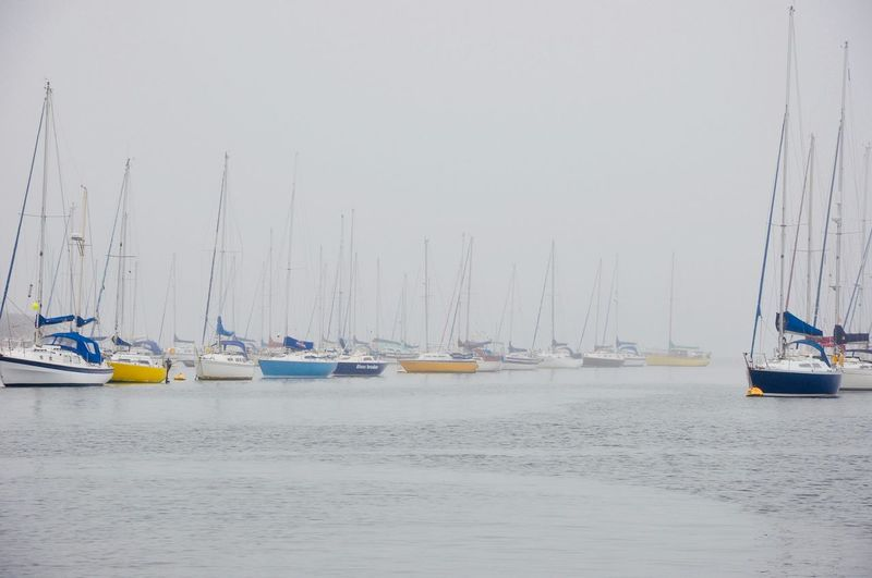 Sailboats moored in sea against clear sky
