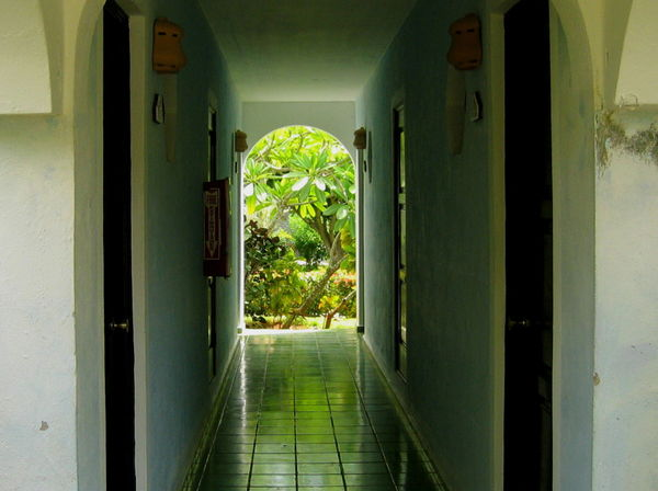 2007 Dominican Republic Dominicus Beach Plants Arch Architecture Built Structure Corridor Day Indoors  No People