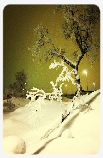 Riktig vinter !! First Eyeem Photo