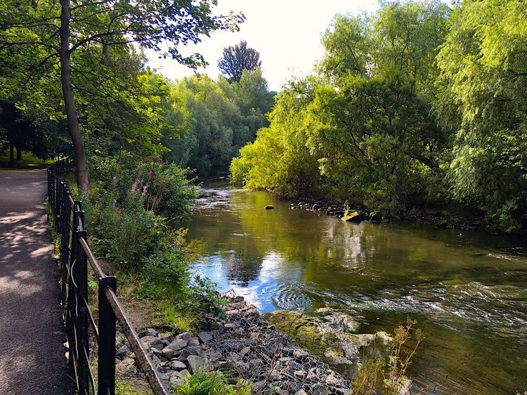 Kelvingrove Park Glasgow  Tranquil Scene Water Tree Forest Tranquility Scenics River Nature Non-urban Scene Growth Green Color Beauty In Nature Day Park Outdoors WoodLand Riverbank Footpath Flowing Water Garden