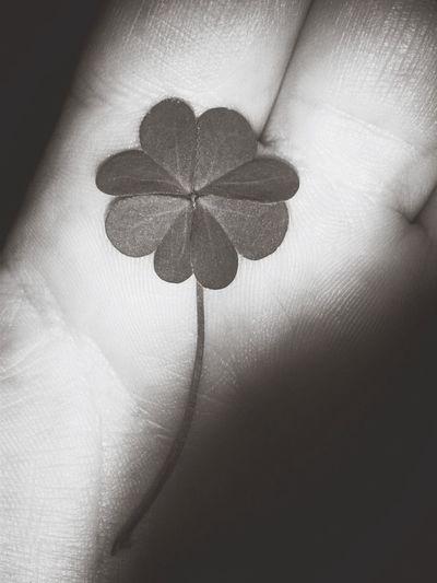 Luck ~ <3 First Eyeem Photo