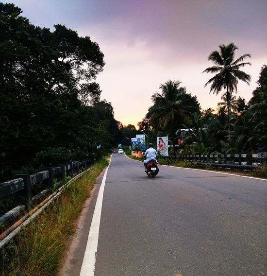 EyeEmNewHere Day Land Vehicle Men Mode Of Transport Motorcycle Nature One Person Outdoors Palm Tree People Real People Riding Road Sky Street The Way Forward Transportation Tree