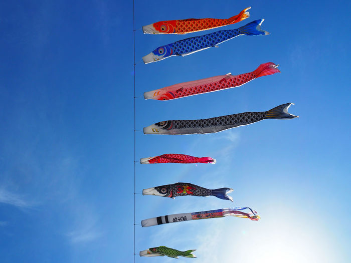 Blue Day Fish Floating Flying Japan Japanese  Japanese Culture Kite Kites Low Angle View Multi Colored No People Outdoors Sky Traditional Traditional Culture Ultimate Japan Wind