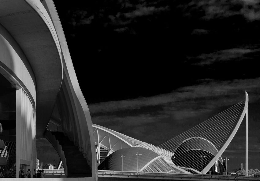 Ciutat De Les Arts I Les Ciències City Of Arts And Sciences Of Valencia, Spain Building And Sky Calatrava Shadows & Lights Calatravaarchitecture Light And Shadow Black And White Photography Cloudscape Valencia, Spain Darkcloud Architecture