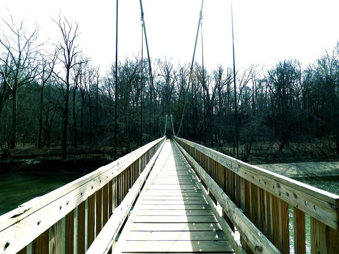 Tree Footbridge Railing Nature Day Bridge - Man Made Structure Outdoors No People Growth Water Beauty In Nature Suspension Bridge Centered The Architect - 2017 EyeEm Awards The Great Outdoors - 2017 EyeEm Awards EyeEmNewHere Let's Go. Together. It's About The Journey