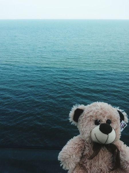 See the sea ^-^ Sea Water Tranquility Ocean Nature Blue Horizon Over Water Sky Toy Bear Seascape Photography See World Furry Mar