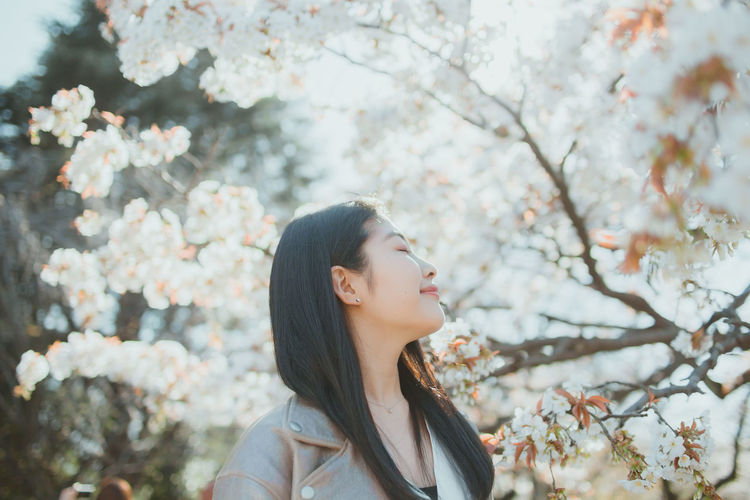 Young woman looking away while sitting on cherry tree