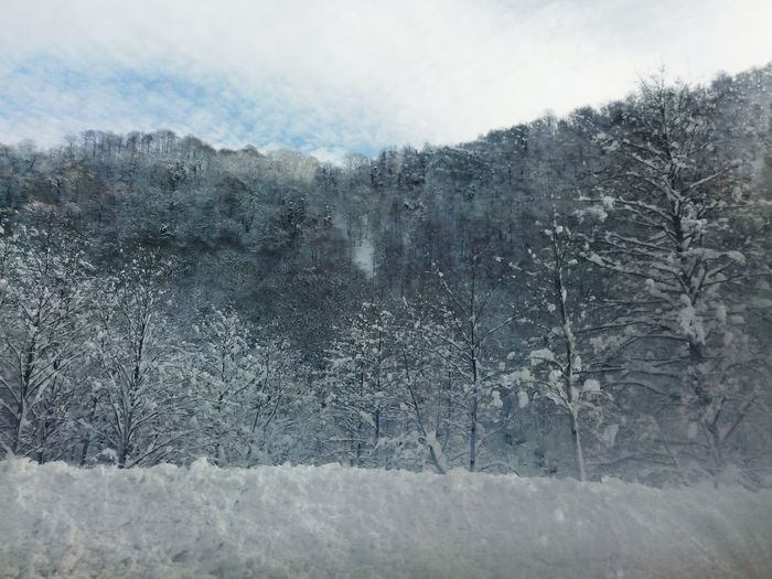 Cankurtaran Doğa Kar Snow ❄ Nature