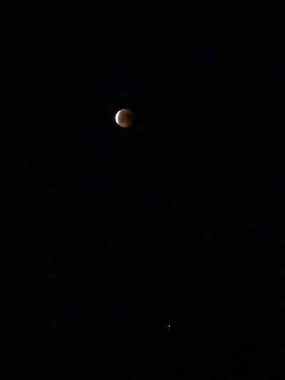 Moon and Mars at Blood Moon Eclipse over Berlin Germany on July 27th 2018 Mars Moon Red Astrology Astronomy Beauty In Nature Clear Sky Copy Space Dark Eclipse Eclipse 2018 Full Moon Historic Idyllic Low Angle View Moon Moon Eclipse Moon Eclipse 2018 Moonlight Natural Phenomenon Nature Night No People Outdoors Planetary Moon Red Marble Scenics - Nature Sky Space Space And Astronomy Tranquil Scene Tranquility