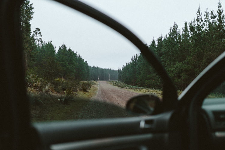 Car Car Door Car Window Forest Green Moody Pacific North West Pine Trees PNW Road Road Trip Wild Wilderness The Great Outdoors With Adobe EyeEm X Adobe - The Great Outdoors