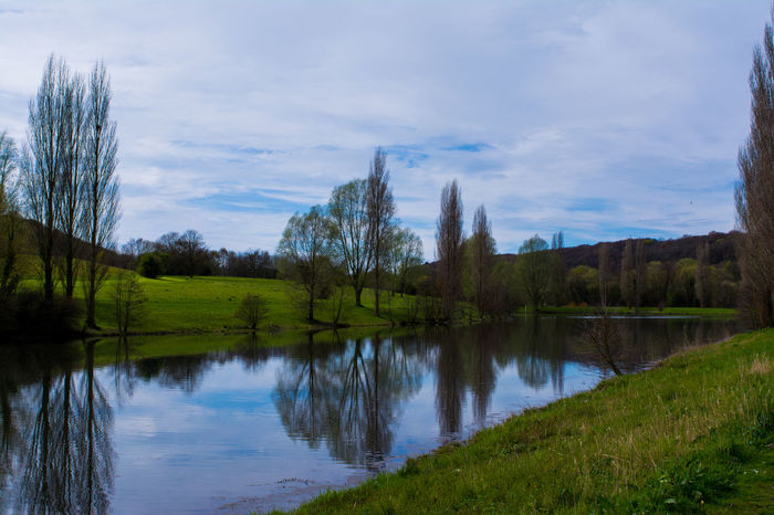 Grass Lake Landscape Nature Reflection Scenics Sky Tranquil Scene Tranquility Tree Water