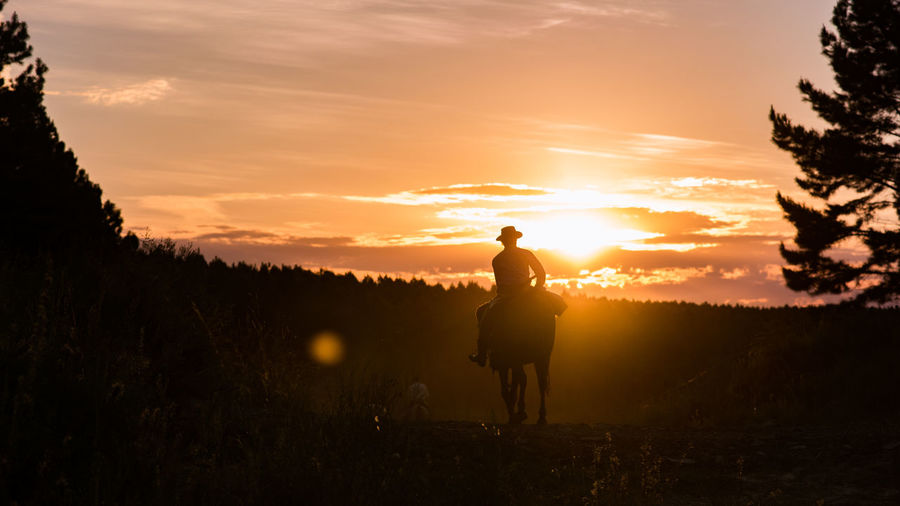 Silhouette Horse Ride At Sunset