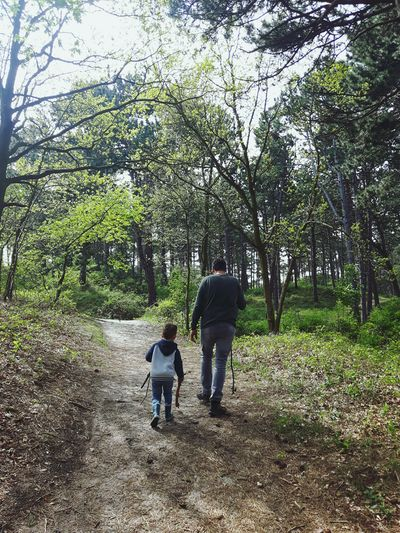Fatherhood Moments Father & Son Father And Son Fatherhood  Intothewoods Into The Woods Into The Wild Rewilding Oranjezon Tree Full Length Togetherness Bonding Men Childhood Child Standing Rear View Kid Pathway Walkway Woods The Way Forward Single Parent