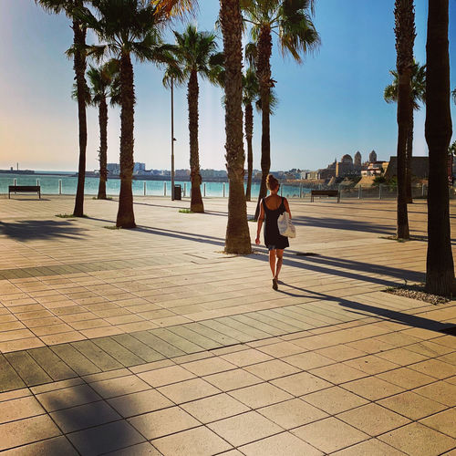 Rear view of woman walking on footpath by palm trees