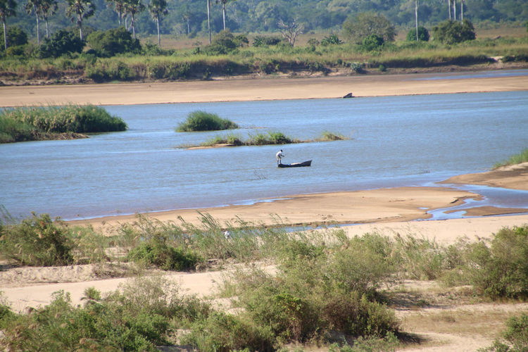 Fisherman in Ruvuma River, Tanzania Mozambique Border Beach Canoe Canoe Paddling Coconut Trees Day Fisherman Fisherman Boat Nature No People Outdoors River Riverbank Riverscape Riverside Serene Outdoors Tree Water