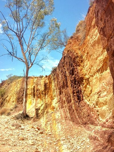 Ochre Alice Springs Nature Colours