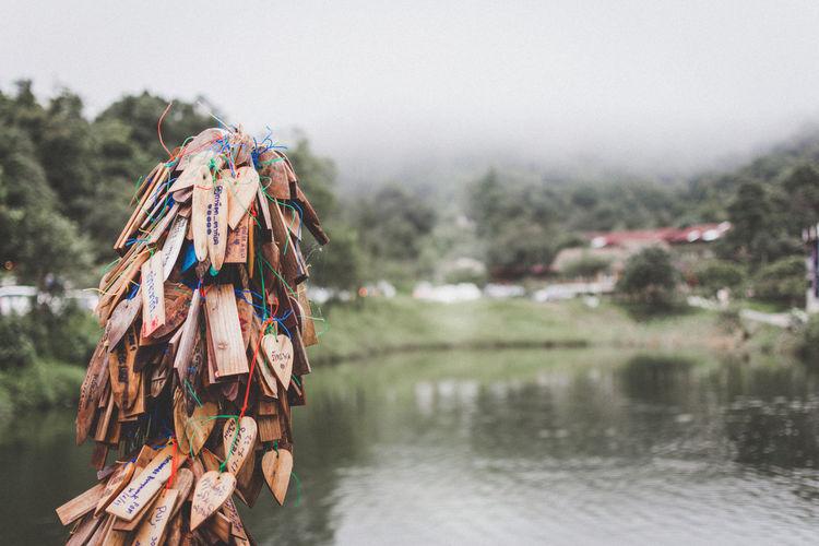 Close-up of prayer blocks hanging against lake