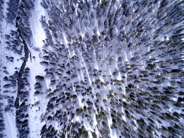 Birdseyeview Dronephotography