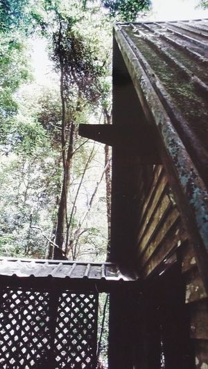 Weekend Getaway Lush Foliage The Woodshed Was Crooked Lovely Memories Peace And Tranquility
