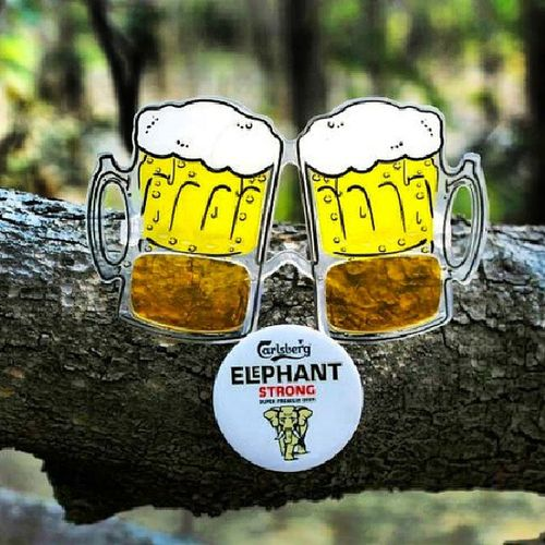 Letsparty Elepahant Strong Beer celebartion