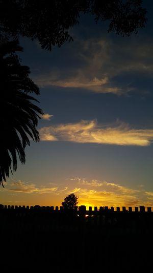 My Sunset