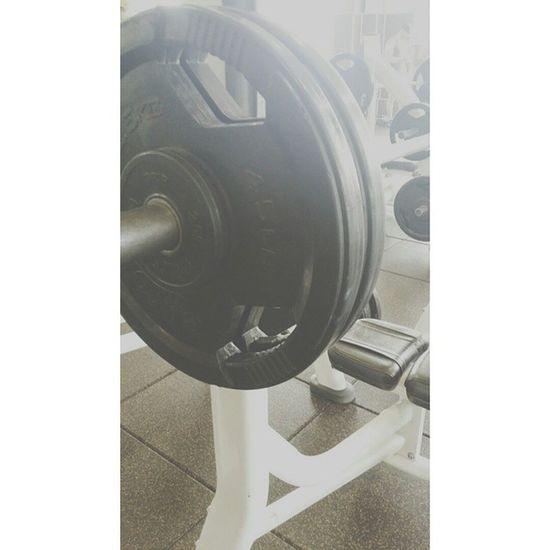 Yesss. 230x2 Muscle Progress Loa Legendsofaesthetics hodgetwins teamfurious powerlifting gainz gains chestday strong dedicated4life dedicatedforlife igers lifestyle benchpress