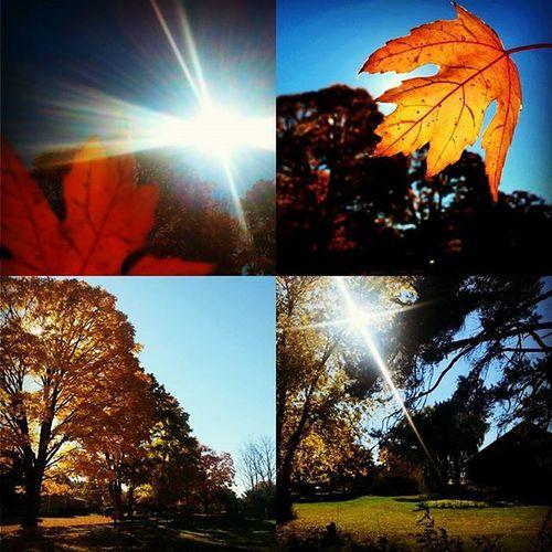 Autumn Upstateny FavoriteTimeOfTheYear