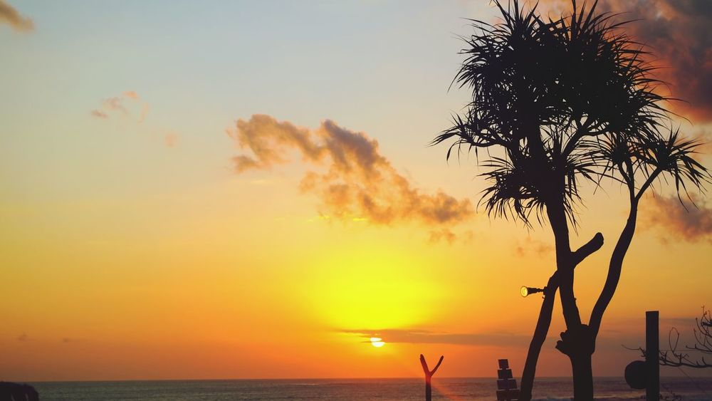 Sunset Silhouette Sea Tree Horizon Over Water Vacations Sun Palm Tree Beach Water Sky Bali Beauty In Nature Orange Color Yellow Nature Paint The Town Yellow