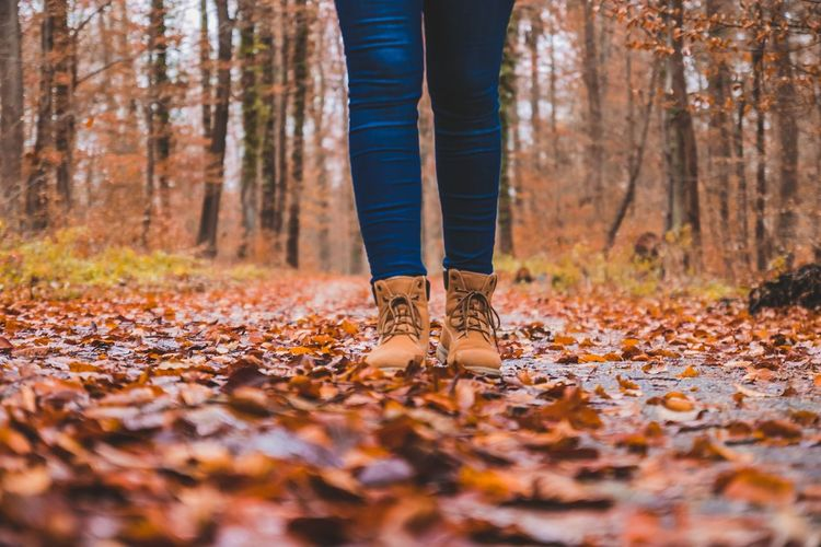 Low section of woman standing on fallen leaves in forest