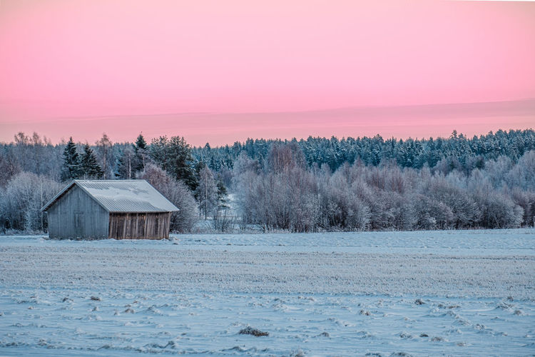 Scenic view of frozen field against sky during winter