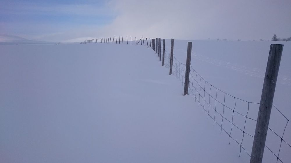Nature No People Day Outdoors Snow Landscape Sky Beauty In Nature Fence Reindeer Fence Border Between Sweden And Norway Grövelsjön Border Crossing Border Between Countries