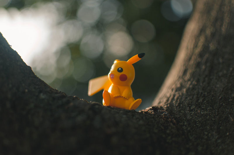 Pika? Representation Toy Selective Focus Animal Representation No People Close-up Day Art And Craft Rubber Duck Nature Single Object Outdoors Creativity Orange Color Animal Animal Themes Sunlight Still Life Craft Small Pikachu Toys Toysphotography Toyslagram Toystagram Toysaremydrug