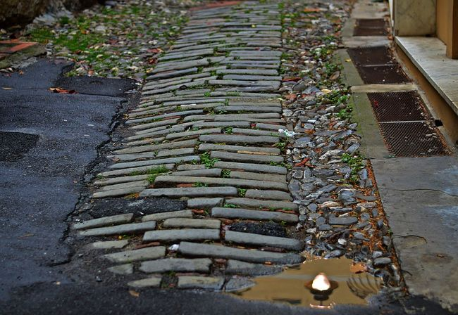 Day Floor Ground Floor High Angle View In A Row Nature No People Outdoors Reflection Road Stone Floor Street The Way Forward Water And Light Water Reflections