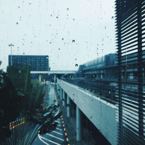 Wet Rain Drop