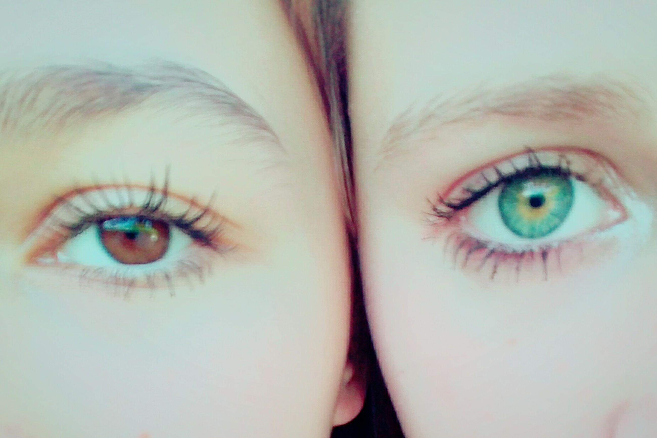 human eye, looking at camera, lifestyles, person, leisure activity, close-up, indoors, blue eyes, portrait, full frame, eyelash, eyesight, green eyes, young adult, eyeshadow, human face, eyeball, eyebrow, multi colored