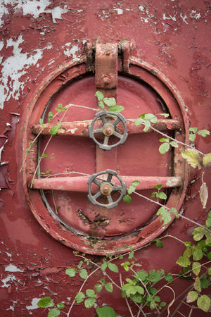 Abandoned Architecture Blackberry BURR Chipped Close-up Closed Day Door Fermentation Hatch Hatchway Nature No People Old Outdoors Paint Pollution Red Rust Rusty Tank Tatty Tool Viticulture
