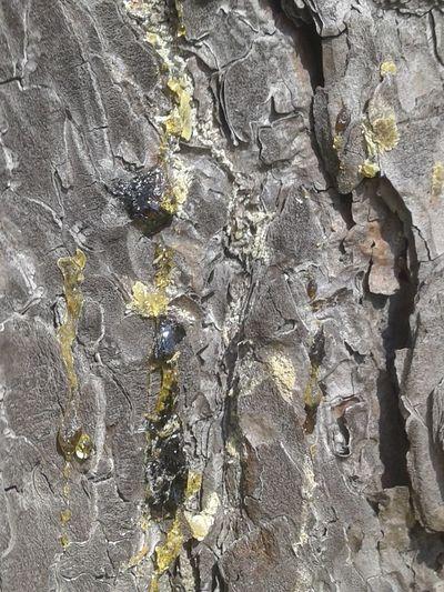 Full frame shot of rock on wall
